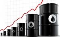 Газрын тосны импорттой холбоотой хүндрэлийг багасгана