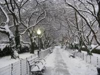 Маргаашнаас ихэнх нутгаар нойтон цас орж, хүйтэрнэ