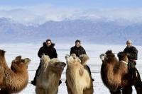 Монголын тухай Францын телевизээр...