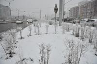 Өнөөдөр ихэнх нутгаар цас орж, шуурна