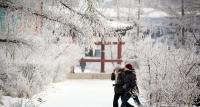 Энэ сарын 22-оос ихэнх нутгаар хүйтний эрч суларна