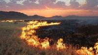 Түймэр гарах шалтгааны 96 хувь нь хүний буруутай үйл ажиллагаанаас болдог гэлээ