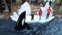 Японы 7D парк буюу амьтны хүрээлэн /Видео/