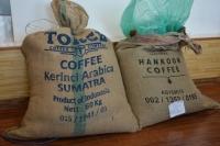 Элэгний хорт хавдар үүсгэх хорт бодис агуулсан кофены түүхий эдийг хураажээ