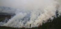 Төв аймагт гарсан түймрийн утаа нийслэлд орж иржээ