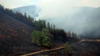 Долдугаар сард нийт 68 удаагийн ой хээрийн түймэр гарчээ