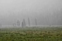 Усархаг бороо орох тул үер усны аюулаас сэрэмжтэй байхыг анхааруулав