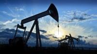 22 талбайд газрын тосны хайгуулын ажил хийгдэж байна