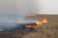 Түймэрт өртсөн талбайн хэмжээ 82.3 хувиар өсчээ