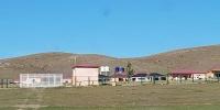 Мөнгөтэй арабын дүрэмгүй замд, мөнгөгүй монгол амиараа хохирсон осол