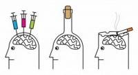 Архи тархины үйл ажиллагаанд хэрхэн нөлөөлдөг вэ