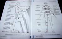 Монгол хүүхдийн биеийн стандартыг тогтоох судалгааг эхлүүлэв