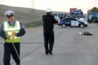 Орон нутагт ослын улмаас 5 хүний амь нас хохирчээ