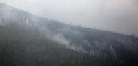 Сэлэнгэ аймагт гарсан түймрийг унтраахаар 180 гаруй хүн ажиллаж байна