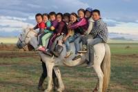 Монгол хүүхдийн тухай сонирхолтой тоон баримт