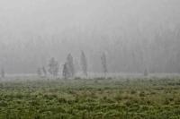 Зүүн аймгуудын нутгаар усархаг бороо орно