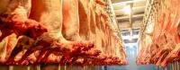 Махны экспортоос 110,6 тэрбум төгрөгийн орлого олжээ