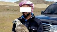 Араб улсын иргэд зөвшөөрөлгүй шонхор шувуу барьжээ