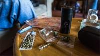 Хар тамхины ургамал тарьж ургуулдаг байсан Турк эрийг гэр бүлийнхэн нь хамт шалгаж байна