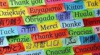 2019 оныг Уугуул хэлний олон улсын жил болгон зарлажээ