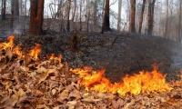 Тээврийн хэрэгслээс үүдэлтэй гал түймрийн аюулаас урьдчилан сэргийлье