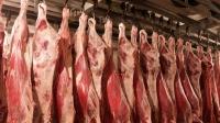 Өнгөрсөн онд 70 гаруй мянган тонн мах урд хөрш рүү экспортолжээ