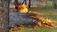 Он гарсаар 89 удаагийн ой, хээрийн түймэр гараад байна