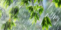 Улаанбаатарт дуу цахилгаантай аадар бороотой, 24-26 хэм дулаан байна