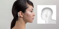 Элон Маскийн бүтээсэн тархины чип аюултай юу?