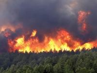 Сибирийн түймэр манайд орж ирэхгүй гэсэн баталгаа бий юу