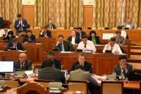 Энэ парламент үндсэн хуульд өөрчлөлт оруулах эрхтэй юу?