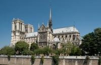 Парисийн Дарь эхийн сүмийг сэргээхэд чулуужсан мод ашиглана