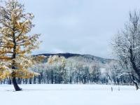 Өнөөдөр Говь-Алтайн нутаг, Завханы өмнөд, Баянхонгорын хойд хэсгээр их цас орно
