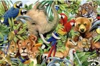 Хөхтөн амьтдын тухай сонин хачнаас