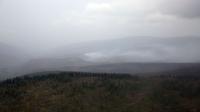 Булган, Дорнод аймагт гарсан ой, хээрийн түймрийг бүрэн унтраалаа