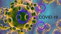 ЭМЯ: Гурван хүний халдварын эх уурхайг тодорхойлох тандалт судалгааны ажил хийгдэж байна