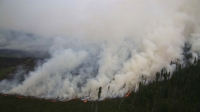 Ой, хээрийн түймрээс урьдчилан сэргийлэх ажлыг эрчимжүүлнэ