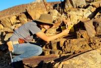 ''Геологи бидний амьдралд'' сэдэвт гар зургийн уралдааныг онлайн хэлбэрээр зохион байгуулж байна