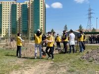 Имартынхан Үндэсний цэцэрлэгт хүрээлэнд мод тарилаа