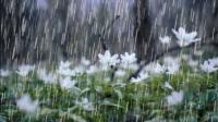 Өнөөдөр төвийн аймгуудын нутгаар бороо, дуу цахилгаантай аадар бороо орно