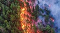 Сэрэмжлүүлэг: Манай улсад нийт 122.6 га талбай түймэрт өртжээ